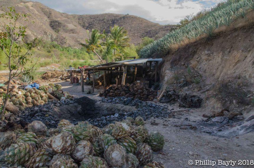 Palenque (mezcal Distillery)
